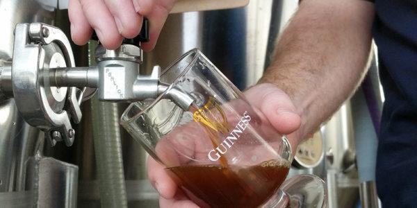 Peter Wiens pours The Longest Way Round dark Belgian ale.Guinness