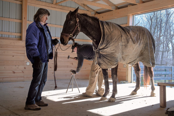Beverly and Tom Strauss with rescued racehorse Larry's Getaway.Photography by David Colwell