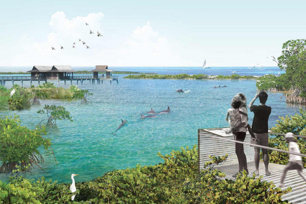 A rendering of the nation's first-ever dolphin sanctuary.Image by Studio Gang