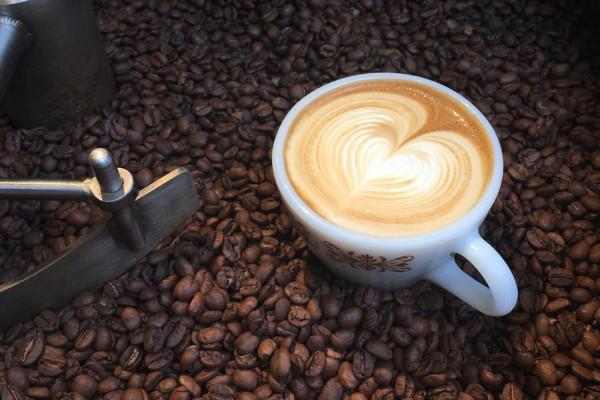 Vent Coffee Roasters