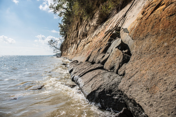 Looking south down Calvert Cliffs along the Chesapeake Bay.Photography by Mike Morgan