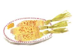 corn on the cob illustration